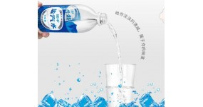 盐汽水 饮料 600ml*20瓶 整箱