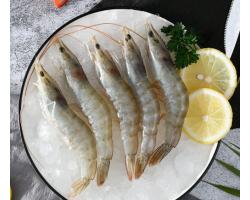 原装进口厄瓜多尔白虾新鲜活冻白虾 含冰2kg 70-90只 盒装 大虾烧烤可剥虾仁 净重1.4kg