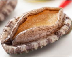 鲍鱼10-12头500g 海鲜水产 火锅食材